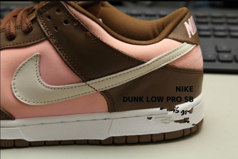Nike DUNK SB Low Skateboarding Shoes Lifestyle Unisex Shoes Stussy Pink  Brown 304292-671 30057013c5f4